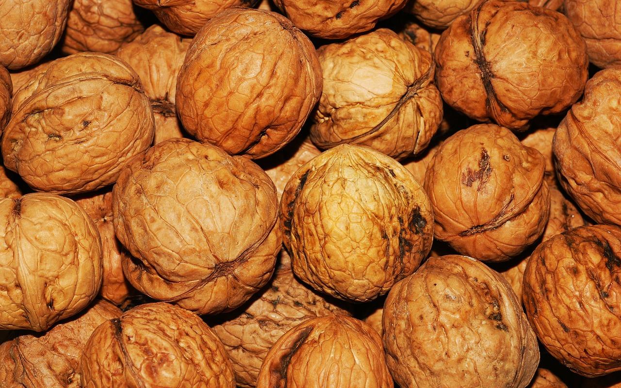 walnuts pregnancy nutrition
