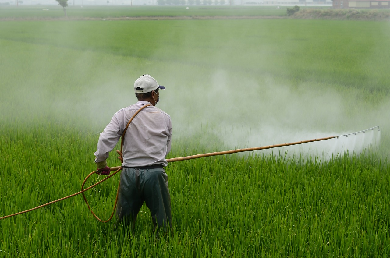 pesticides fetal development